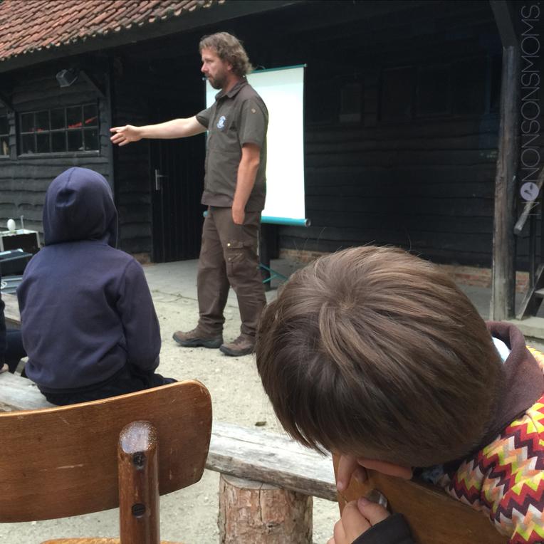 averegten vleermuizen dandan15 toerende toerist