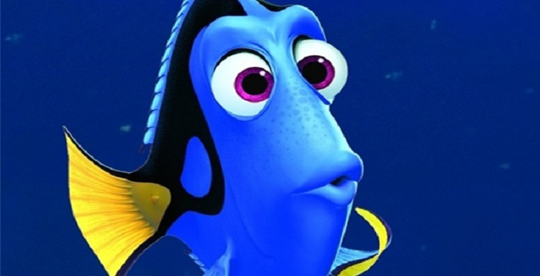 dory def